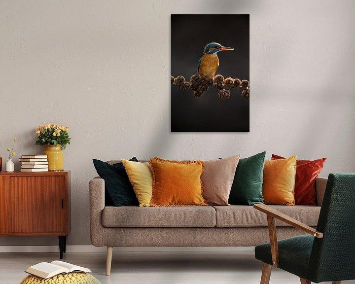 Beispiel: Eisvogel auf Fichtenzweig im Gegenlicht im Wurf von Jeroen Stel