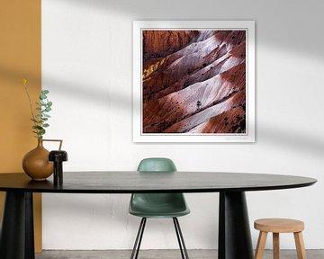 Bryce National Park USA van John Sassen