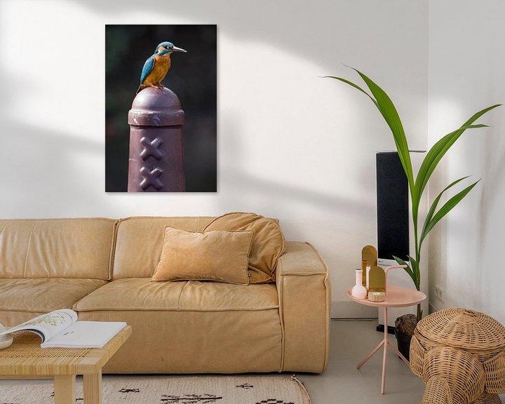 Beispiel: Eisvogel auf Amsterdammertje in Amsterdam von Jeroen Stel