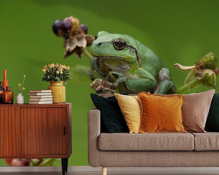 Beispiel fototapete: Baumfrosch auf Brombeere in grün von Jeroen Stel