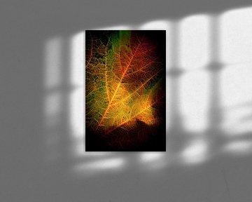 Herfstbladeren 15 van Henk Leijen