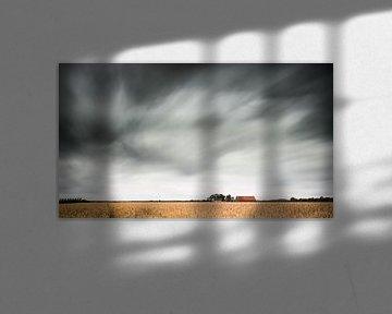 Graanveld (kleur) van Lex Schulte