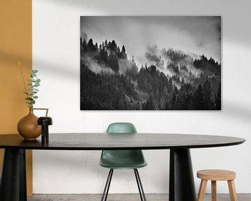 Alpennebel 3 von Bart Rondeel
