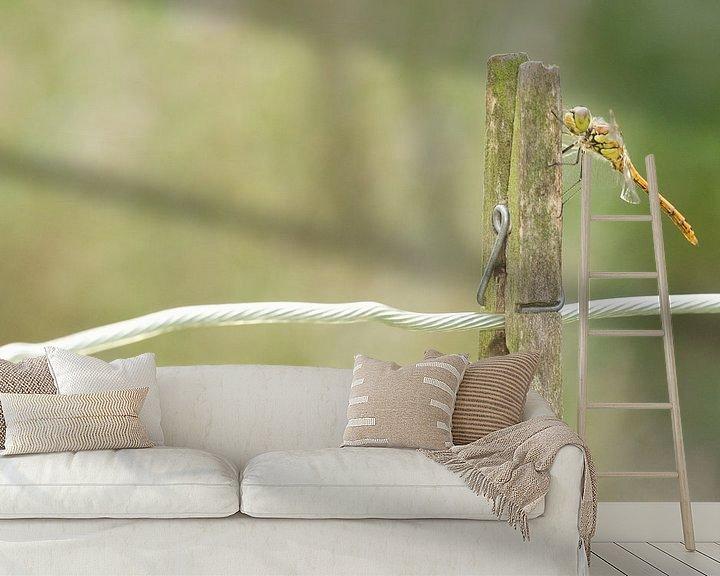Sfeerimpressie behang: Steenrode Heidelibel op wasknijper van Jeroen Stel