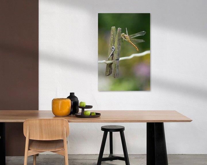 Beispiel: Steinroter Heidelibel auf Wäscheklammer von Jeroen Stel