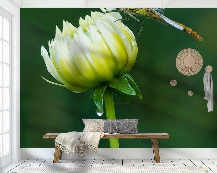 Beispiel fototapete: Ziegelroter Heidelibel auf Blume von Jeroen Stel