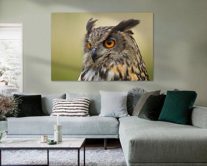 Sfeerimpressie: Oehoe portret van Jeroen Stel