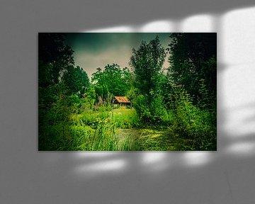 Oude schuur in de tuin aan de vijver van Patrick Dijkman