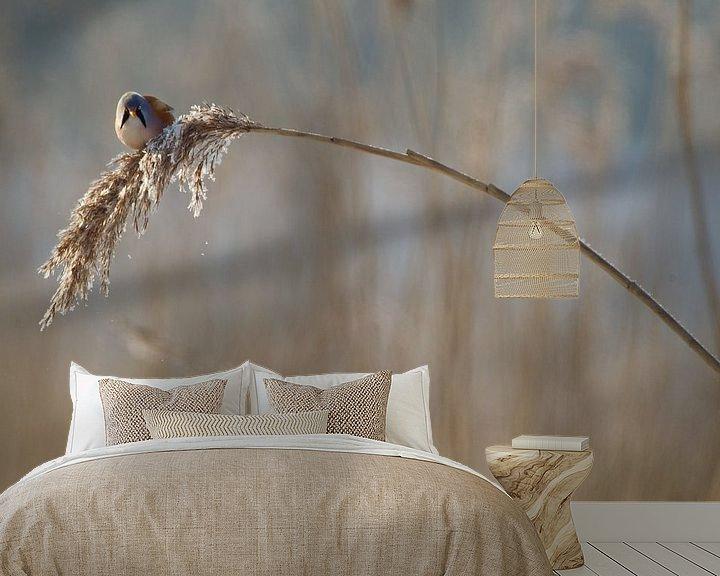 Sfeerimpressie behang: Baardmannetje in het riet in de winter van Jeroen Stel