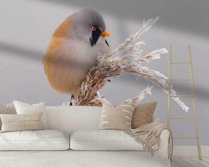 Sfeerimpressie behang: Baardman in het riet in de winter van Jeroen Stel