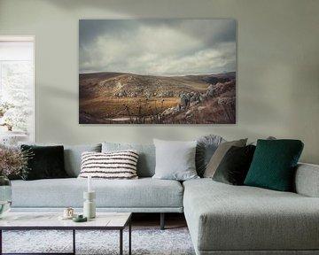 Ritoma, Tibetisches Plateau II von Anahi Clemens