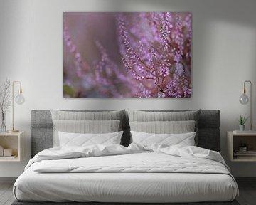 kalte Heidelandblume von Tania Perneel