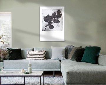 Botanische afdruk Berken tak van Angela Peters