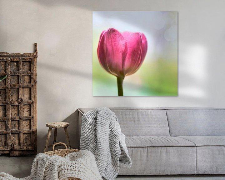 Sfeerimpressie: Tulp van Jeannette Penris