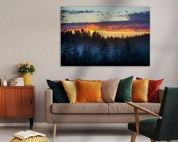 Gekleurde hemel bij zonsondergang in Finland van Caroline van der Vecht