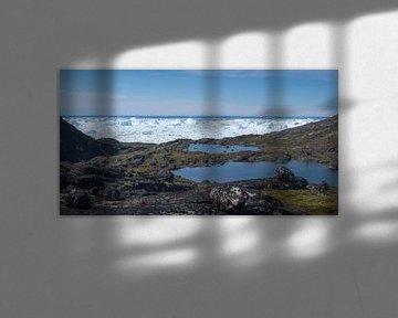 Meertjes met uitzicht op de Ilulissat ijsfjord in Groenland. van Ralph Rozema