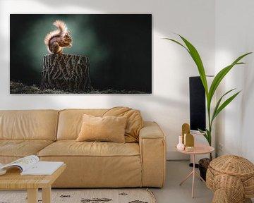 Eekhoorn van Alex Pansier