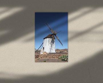 Spaanse molen van Marianne Evers