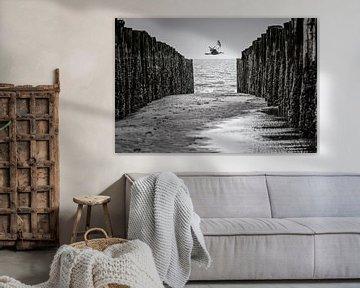 Möwe zwischen den Wellenbrechern von René van der Horst