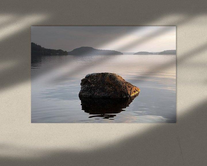 Impression: Pierre dans le lac sur Tomas Grootveld