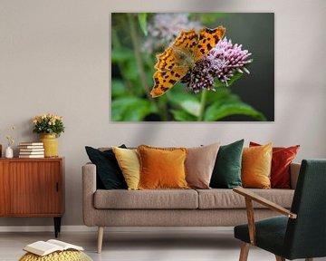 Vlinder Aurelia van Shirley Douwstra