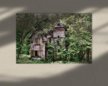 Die Villa von Dick Carlier
