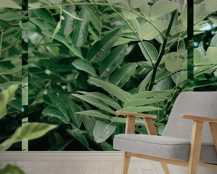 Sfeerimpressie behang: Natuur - Green Leaf van Mandy Jonen