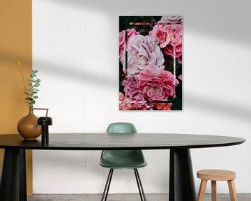 Natur - Rosa Rose von Mandy Jonen