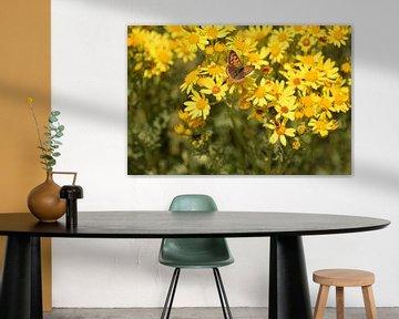 Brauner Schmetterling auf gelben Blüten von Nicolette Vermeulen