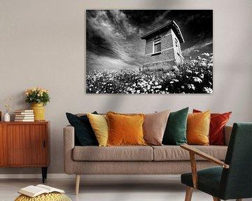 Häuschen am Deich, niederländische Küste (Schwarz-Weiß) von Rob Blok