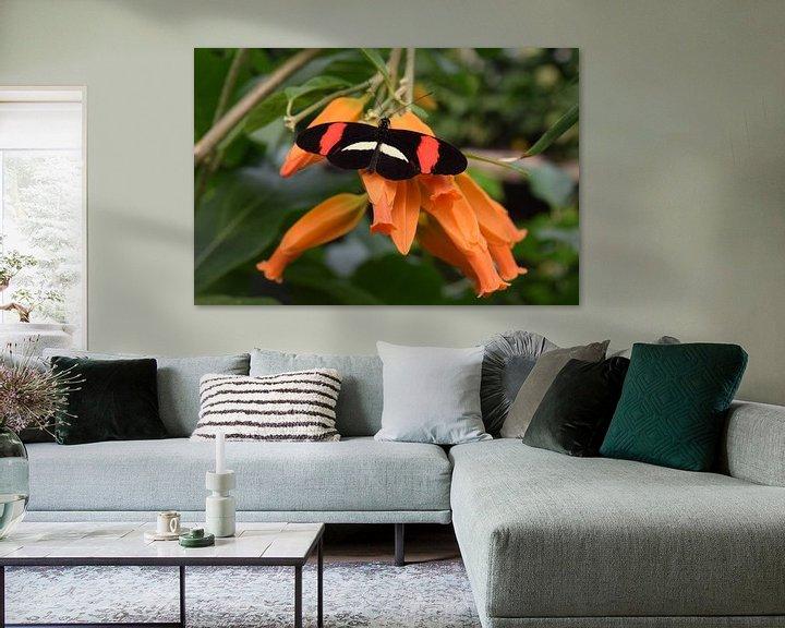 Beispiel: Bunter Schmetterling auf einer Orangenblüte von Nicolette Vermeulen