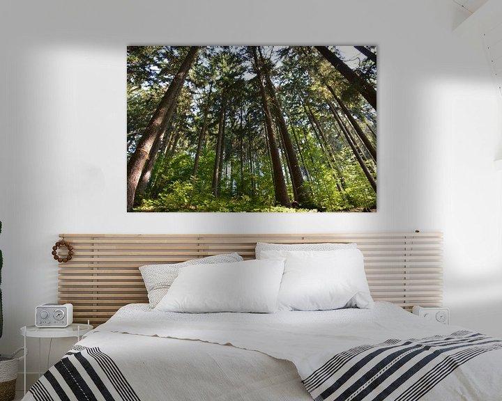 Sfeerimpressie: Bad Sacha de Harz van Henriette Tischler van Sleen