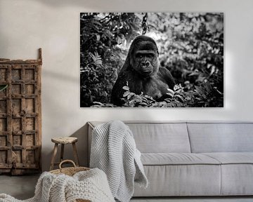 Gorilla von Roger te Wierike