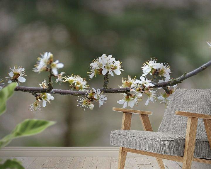 Sfeerimpressie behang: arboretum Zeijen/Assen van Henriette Tischler van Sleen