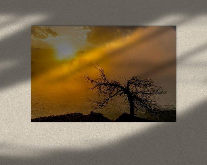 Sfeerimpressie: Boom bij zonsopgang van Floris van Woudenberg