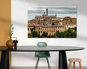 Daken en kathedraal van Siena, Toscane