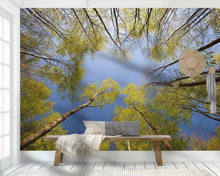 Sfeerimpressie behang: Kijk omhoog! van Ron van Elst