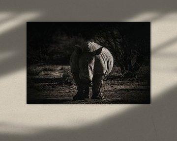 Er zeigt seine Rippen. von Joris Pannemans - Loris Photography