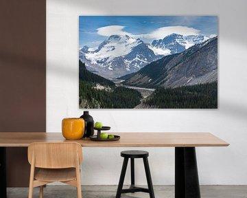 Rivier in The Rockies van Floris van Woudenberg