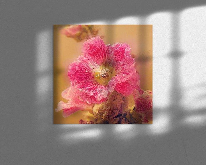 Sfeerimpressie: Oudroze bloem van Fotografie Jeronimo