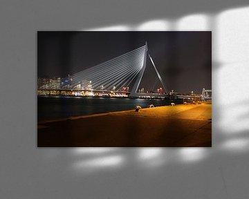 Erasmusbrücke von Nul10 Foto
