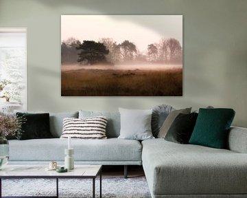 boom in de mist van Tania Perneel