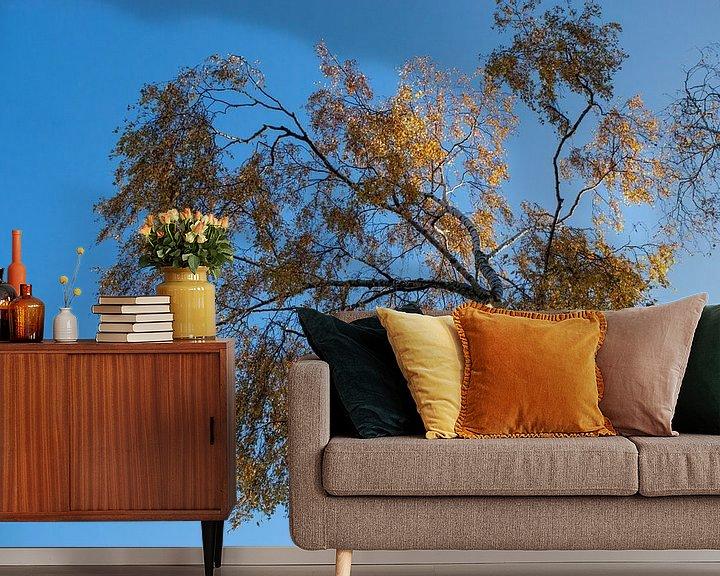 Sfeerimpressie behang: Berk met gouden bladeren van Diana Mets