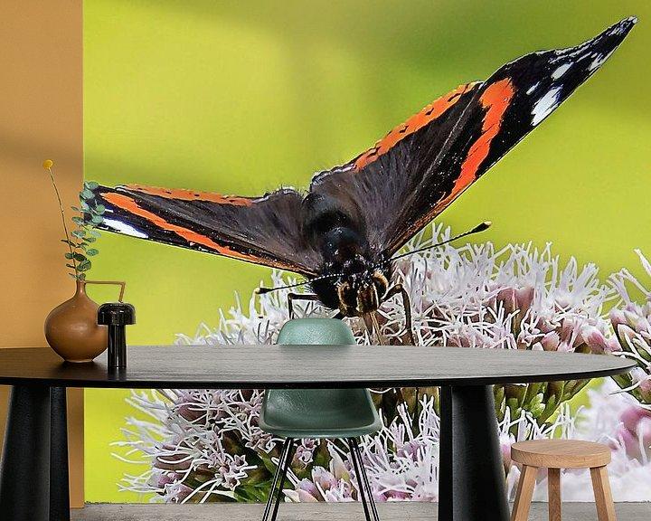 Sfeerimpressie behang: Close-up van een Atalanta vlinder van Fotografie Jeronimo