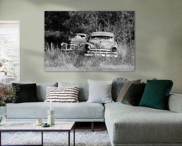 Rost Autos von Willem van Holten