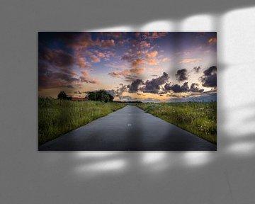 Lonely road van Ronnie Schuringa