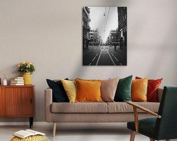 Mitten in der Staudammstraße von Phil Yisrael