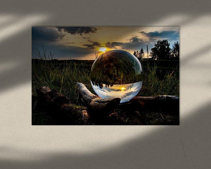 Sfeerimpressie: Magic of Nature van Patrick Boonstra