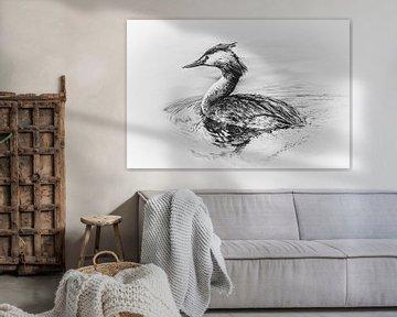 Taucher (schwarz-weiß) von Fotografie Jeronimo