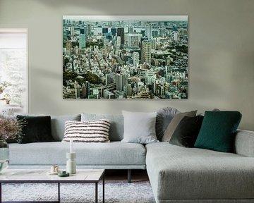 Die Skyline von Tokio mit hohem Kontrast. von Claudio Duarte